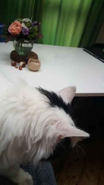 Biedermeier mit Katze